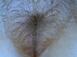 Hun you have a great looking hairy pussy mmmmmmm!