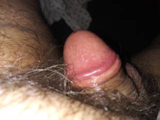 my little cock