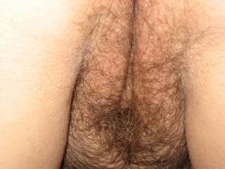 i do babe, my cock is hard and ready for u'r hairy pussy !