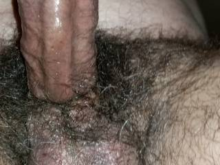 So aroused knowing that many will see my big hard cock!