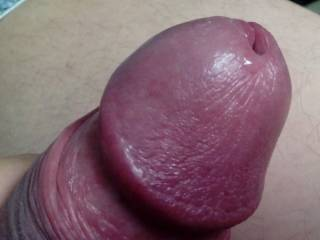 yummy love to run my tongue around that sweet head and stick my tongue in the yummy hole tasting the swwet precum.