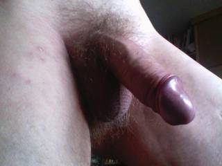 makes my cock hard just looking at it.