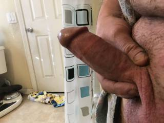 My cock thick and hard and ready to fuck