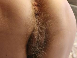Hairy pussy and ass of my mature GF