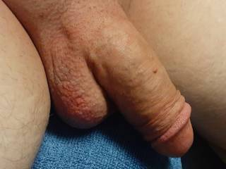 Nice pictures of my cock