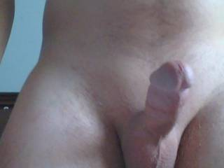 Freshly shaved hard cock. This picture was taken before I start cumming. Ladies tell me how you like it. Women only
