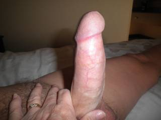 Nice cock I could have lots of fun with it yummy