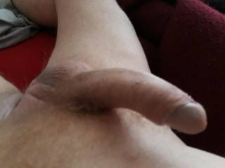 Nice morning glory. Need a pussy around it