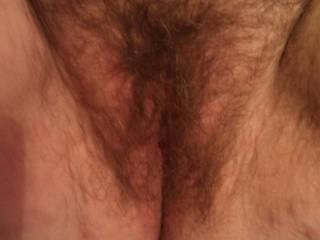 do you love the hairy pussy guys and girls?