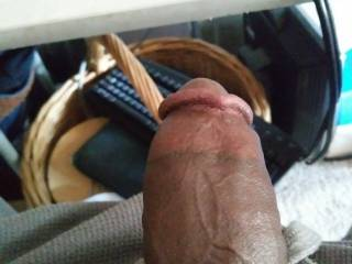 My dick taking a picture for u horny ladies