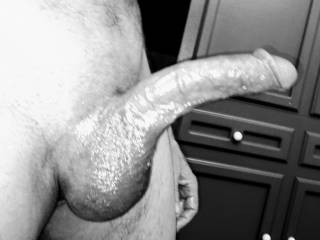 Hope this pic turns you people on? Obviously I was turned on. I love stroking my shaved hard cock. Even more when I use oil. Oh oh fuck bam feels so fucking. Sliding up and down slowly just teasing the fuck out of this cock. Hehe you all like that?