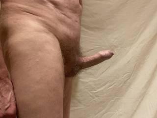 Foreskin position when erect 1