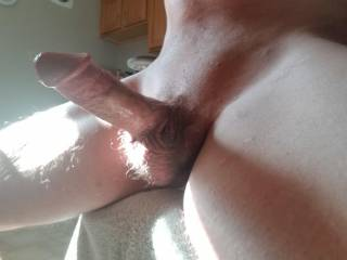 Thick cock in the sun