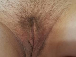 My last hairy pussy pic for awhile. I kept it as long as I could stand it.