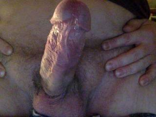 horny and dribbling some precum