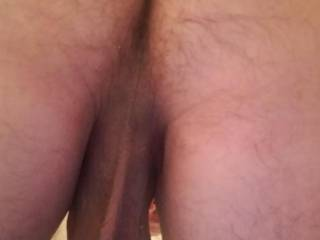 Ass with hanging balls