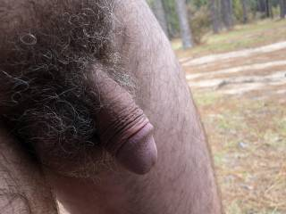 My little dick in the outdoors