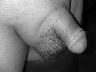 Just a plain old average everyday no tricky camera angle dick freshly manscaped.
