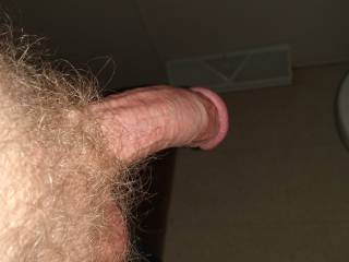 Semi hard dick 1