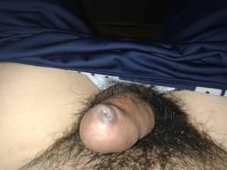 boy's dick