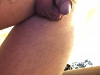 Foreskin back on my flaccid cock