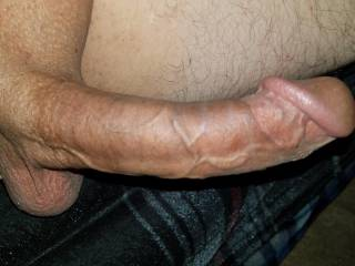 Are you curious what its like to suck a really big dick