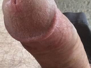 Hubby is looking for my pussy
