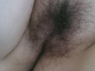 I'd love to rub my cock all over your hairy pussy