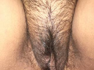 Hairy pussy before a trim