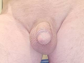 My cute little winkle, he grows well when excited as you can see from my pics, when he,s soft he fits in panties lovely x what do you think guys