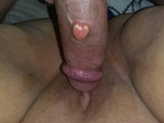 My husbamd is pounding my wet pussy....