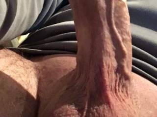 A pic to show how veiny and thick my cock is What would you do with it ladies?