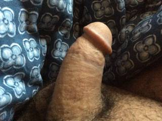 Need someone to suck my small dick