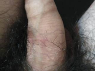 My dick after masturbation