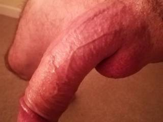 My limp cock for a  friend