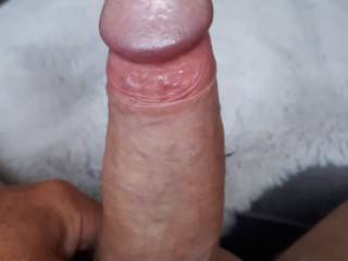 Playing in Zoig chat with friends, getting so aroused and horny mmmmm, who would like to take my throbbing hard cock in hand, mouth or somewhere else?. Do tell me your thoughts, I love your comments xx