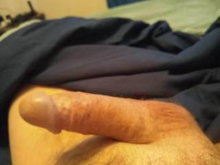 I just wanted to share my morning wood. Any ladies interested in playing. Couples welcome as well.