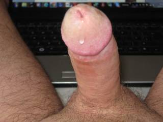 I had a spare afternoon and took some shots of my cock while I wanked looking at wet pussy on Zoig! Great fun, looking forward to showing myself off again - I hope you ladies like the pics!