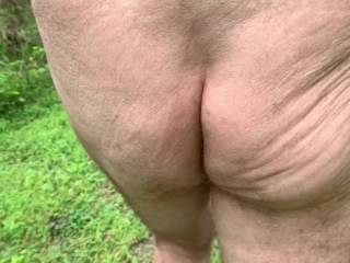 I just love following Mr. F's tight butt cheeks on our nature walks.  From Mrs. Floridaman