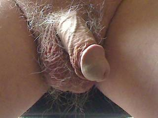 love to watch my wife suck that cock