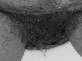 Pic close up of my pubic hair taken on the 4th of July of 2007,while I am busy in the bathroom.
