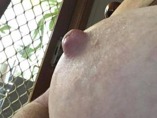 Local amateur cumshot yuba city california