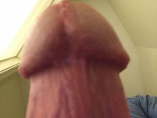 Reading some particularly dirty comments and messages caused my cock to throb. I love to hear what you want to do to me!!