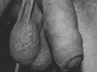 Balls full. Needs some gentle hot lips around :)