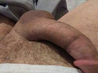 Just send the Miss' some dick pix.regular old Tuesday