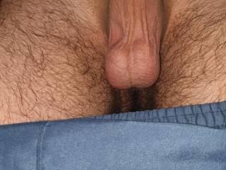 Is my dick good ?