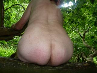 would be nice to give that arse a good spanking then slide deep inisde as you squat on that tree mmmmm
