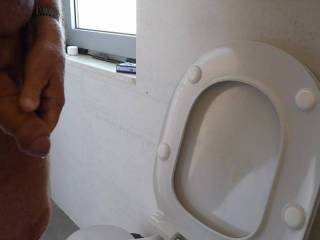 Wanking my Cock at WC before going to bed