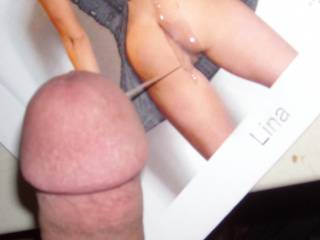 Another tribute for lina. One very hot woman. We need to catch up so I can pump you full of my cum for real.