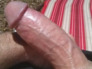 Hot sun shining off my hard cock